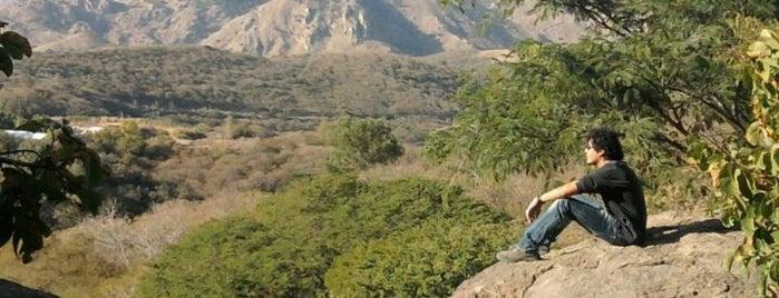 Bosque del Centinela is one of Reto 100 ZMG.