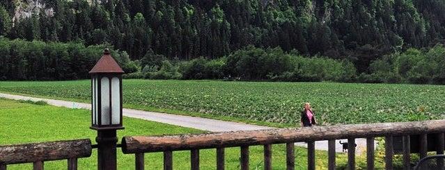 Trofana Tyrol is one of CNG.