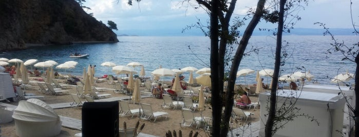 Bahia Beach Bar is one of 🌞🌊Chalkidiki-->to The Beach 🐋🐬🐟🐠🐡🦀.