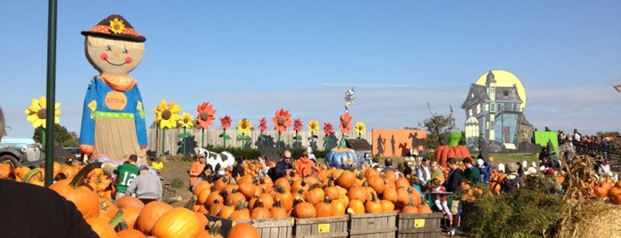 Linvilla Orchards is one of Philadelphia To-Do.