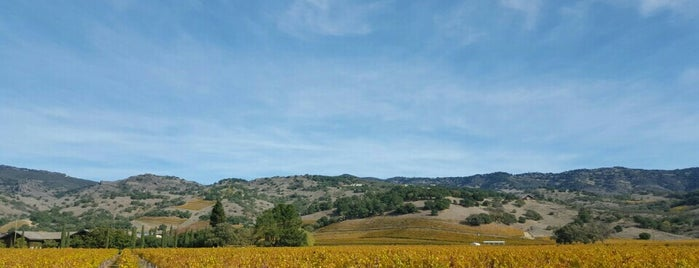 Stags Leap Wine District is one of West Coast.