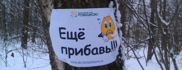 Лыжная трасса СК Ромашково is one of Склоны.