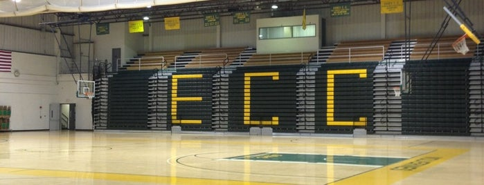 Essex County College Gym is one of ESSEX COUNTY COLLEGE.