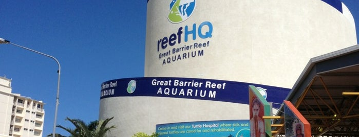 Reef HQ Aquarium is one of Places I been to before in my life.