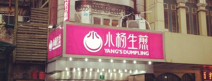 Yang's Fried Dumplings is one of Shanghai.
