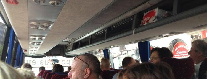 Bus Brandweer zele is one of regulars.