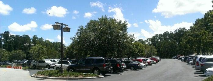 Wilderness Lodge Parking Lot is one of Walt Disney World.