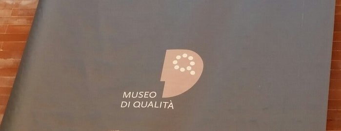 Museo di Storia Naturale is one of LOCAL.