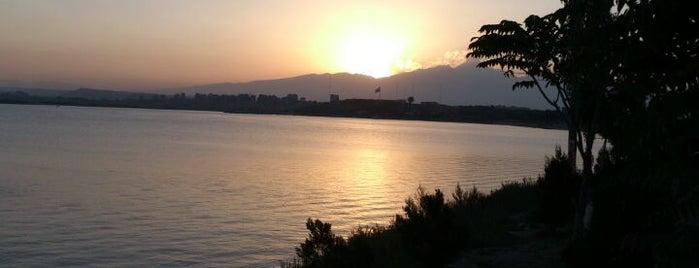Shorabil Lake | دریاچه شورابیل is one of Iran Natural Venues | جاذبههای طبیعی ایران.
