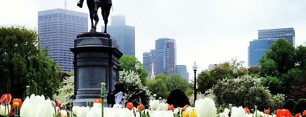 Boston Public Garden is one of Birds, Mountains, and Lakes, Oh My!.
