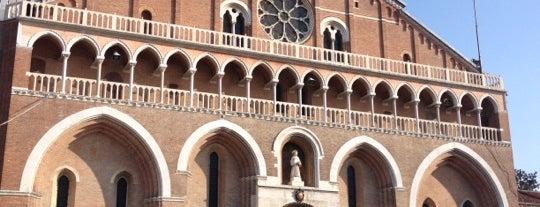 Basilica di Sant'Antonio da Padova is one of Padova.