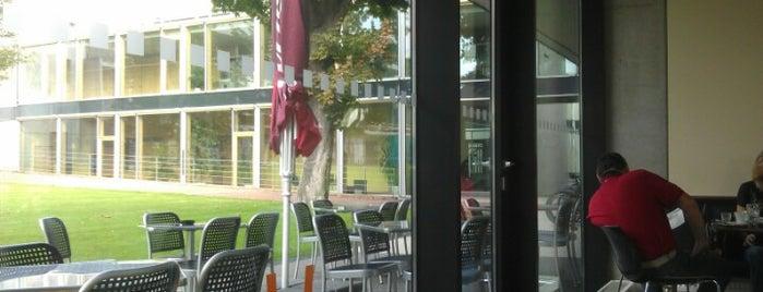 Ventana Café is one of Cafés.