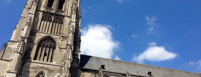 Basiliek van Tongeren is one of Belgium / World Heritage Sites.