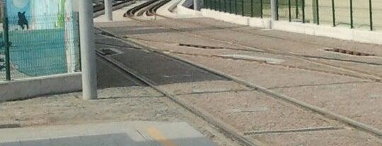 Eğitim Fakültesi Tramvay Durağı is one of Samsun'un Hafif Raylı Sistemleri.