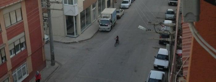 Turgut Reis Caddesi is one of Eskişehir'deki Caddeler.