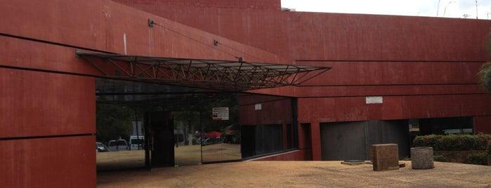 Museo de Historia Natural José Narciso Rovirosa is one of Arte.