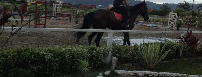 Jockey Clube is one of Buh.