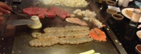 Tokyo Japanese Steak House is one of Restaurants visited.