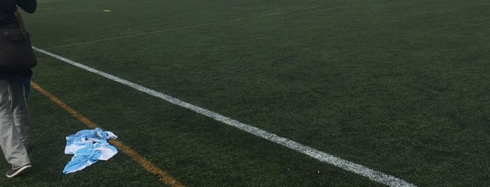 Matchday Centres @ Wadham Lodge Sports Ground is one of Football grounds in and around London.