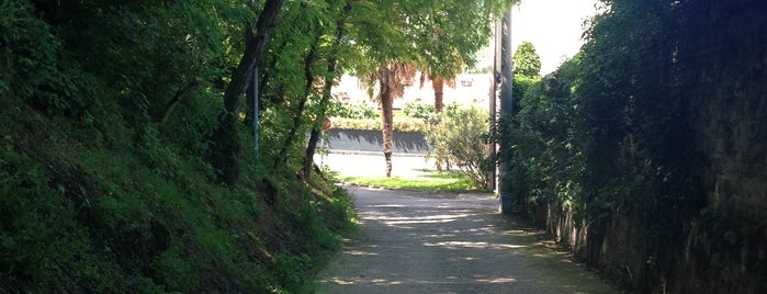 Baone is one of Veneto best places.