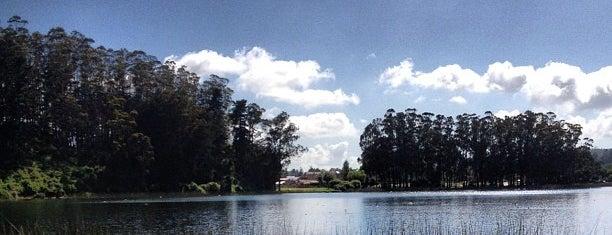 Laguna Grande San Pedro is one of Penquista de corazón <3.