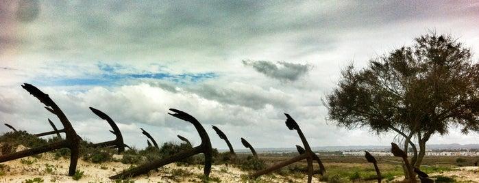 Praia do Barril is one of Guía del Algarve.