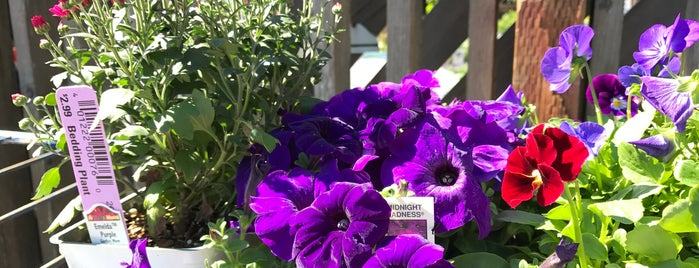 Sloat Garden Center is one of The 13 Best Flower Shops in San Francisco.