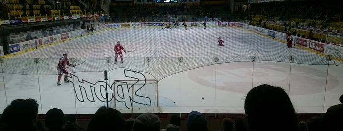 Zimní stadion Ivana Hlinky is one of Tipsport extraliga stadiony.