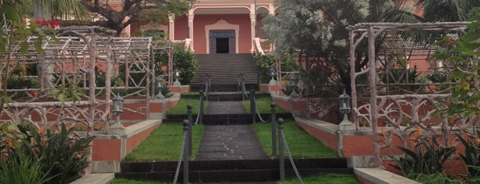 Liceo Taoro is one of Islas Canarias: Tenerife.