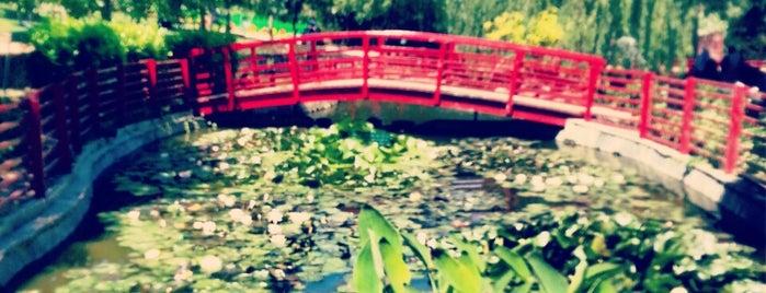 Nezahat Gökyiğit Botanik Bahçesi is one of aylakfare.