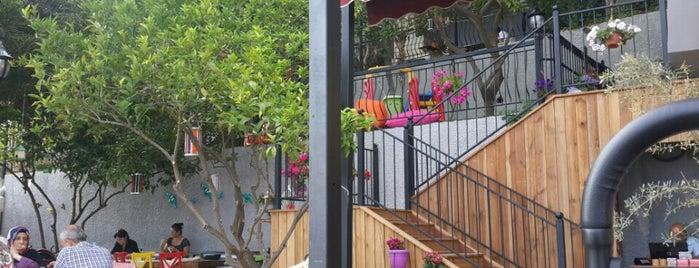 Zencefil Cafe Restaurant is one of antalya~ alanya~ side~belek.