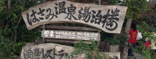 波佐見温泉 湯治楼 is one of 温泉.