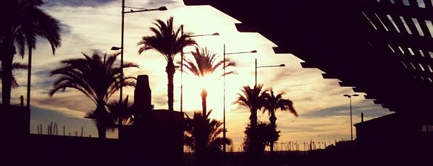Torrevieja is one of Playas.