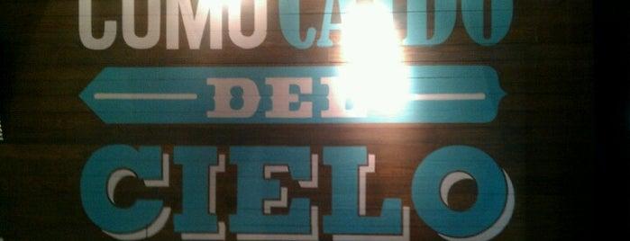 Cielito Querido Café is one of DF (La lista de mis ojos, paladar y oidos).