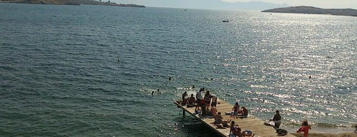 Kadınlar Plajı is one of 2018.