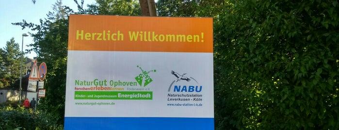 NaturGut Ophoven is one of Köln.