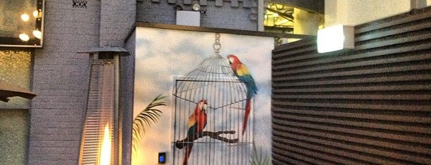 The Birdcage is one of Rundle Street Adelaide.