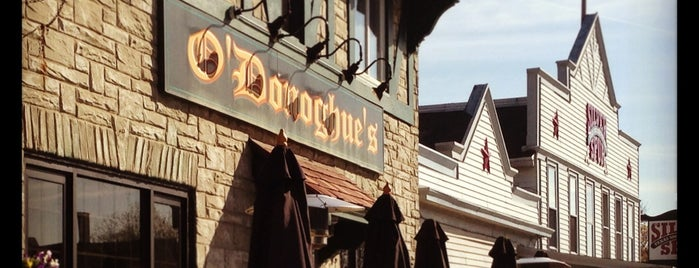 O'Donoghue's Irish Pub is one of Grab a Bite NOW food reviews.