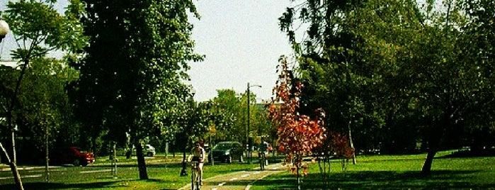 Ciclovía Parque Pocuro is one of Santiago.
