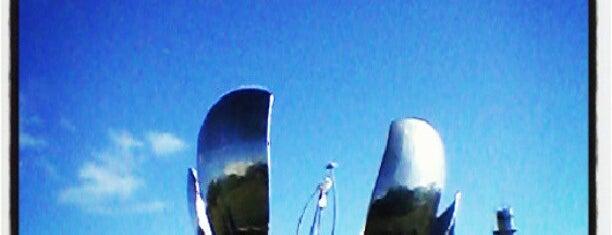 Plaza de las Naciones Unidas is one of Favoritos.