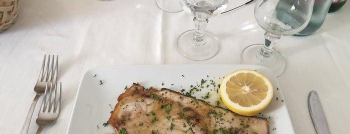 Il Porticciolo is one of restorants.