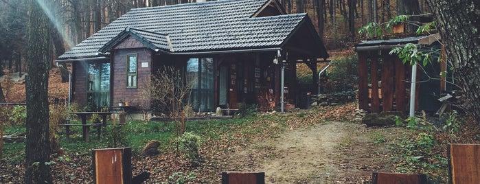 Erdei FaLak Vendégház is one of countryside • hungary • sleep.