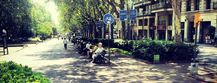 Passeig de Sant Joan is one of BCN 2012.