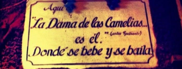 La Dama de las Camelias is one of Guanajuato Beer.