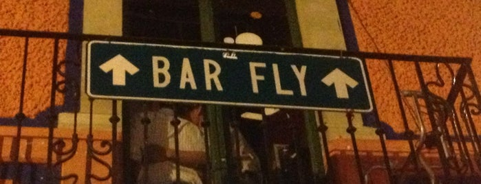 Bar Fly is one of Guanajuato Beer.
