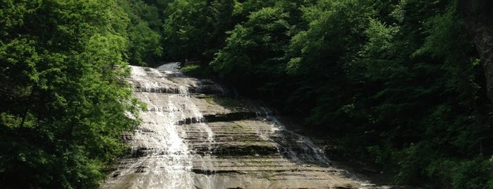 Buttermilk Falls State Park is one of NY Jets Training Camp.