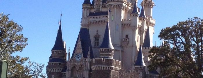 城前パレードルート is one of Disney.