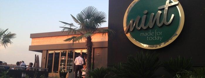 Mint Restaurant & Bar is one of İzmir.