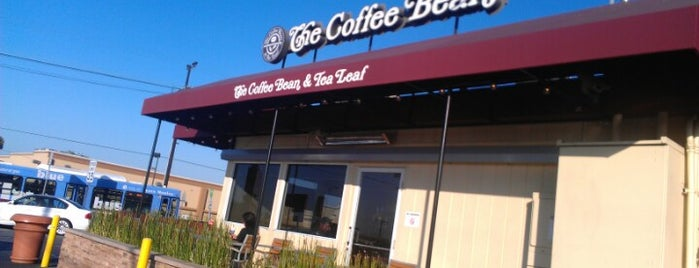The Coffee Bean & Tea Leaf is one of Top picks for Coffee Shops.