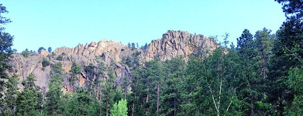 Black Hills National Forest is one of Rapid City, SD.